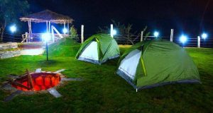 Togedr brings to you curated camping trips. Camping in Delhi,Camping in Bangalore,Camping in Kasol,Camping in Dalhousie,Camping in Mumbai, Weekend Camping.