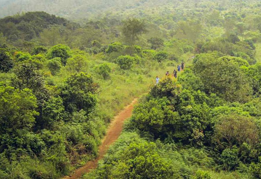 Tadiandamol-trek-in-Sahyadri