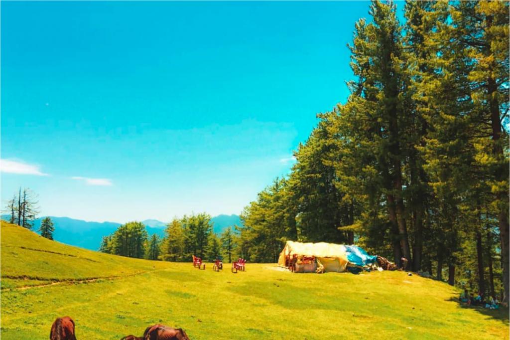 Chandrakhani Pass Trekking in Summers