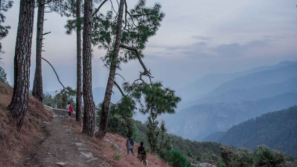 Binsar wildlife sanctuary. Image-Source